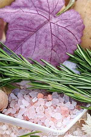 Free Primordial Sea Salt And Rosemary Royalty Free Stock Photography - 6698837