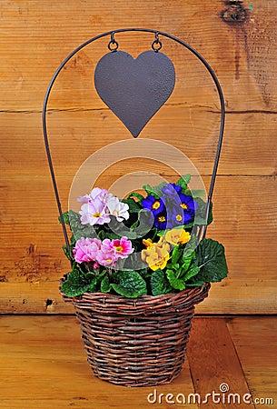 Primrose basket spring Easter