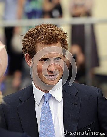 Free Prince Harry Stock Photos - 25213523