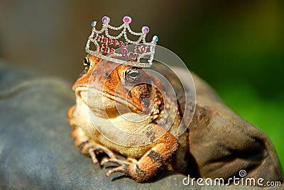 Princesse de grenouille
