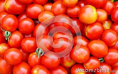 Priorità bassa con i pomodori di ciliegia ecologici