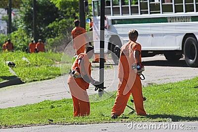 Prisoner labor 1