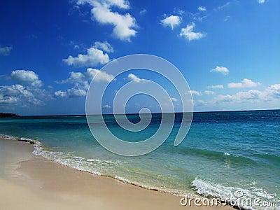 Pristine Beach - Shoreline