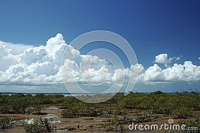 Pristine Clouds