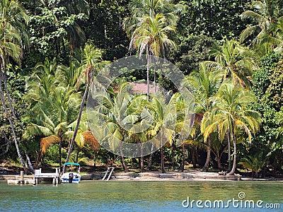 Private beach in the Caribbean sea