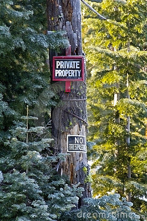 Private Property Signs in Snowy Forest