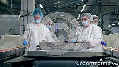 Processus de travail des femmes spécialistes dans une usine alimentaire près du convoyeur banque de vidéos
