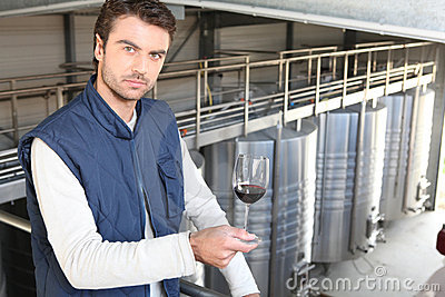 Producer in wine warehouse