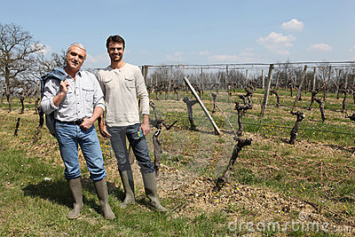 Producers in front of vines