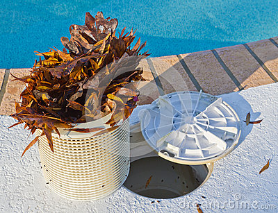 Producto de limpieza de discos de la cesta de la piscina