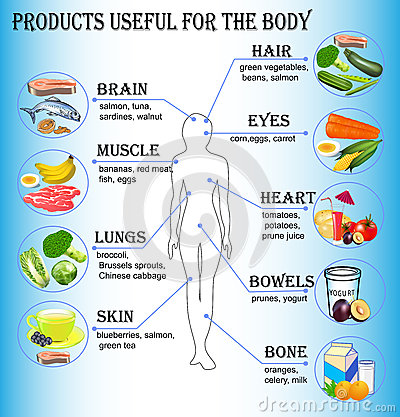 Of products useful for the human body