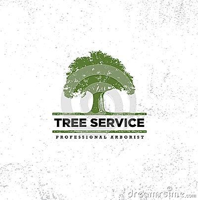 Free Professional Arborist Tree Care Service Organic Eco Sign Concept. Landscaping Design Raw Vector Illustration Stock Photo - 107881350