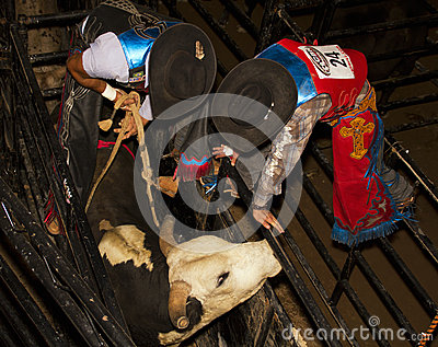 Professional Bull Riding Competition Editorial Stock Photo