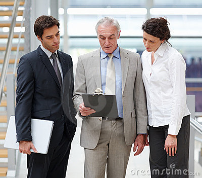 Professional business people discussing reports