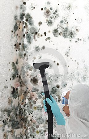 Free Professional Cleaning Mould Off A Wall Royalty Free Stock Image - 25118026
