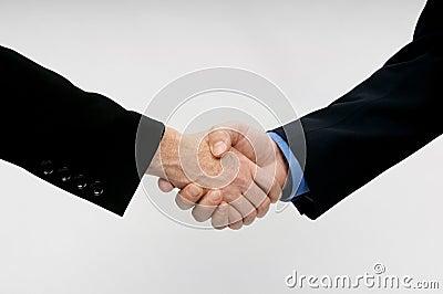 Professional Hand Shake