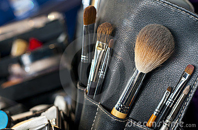 Professional makeup case with brushes