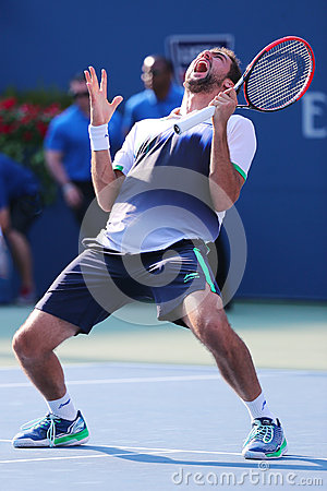 Free Professional Tennis Player Marin Cilic Celebrates Victory After US Open 2014 Quarterfinal Match Royalty Free Stock Photo - 45896485