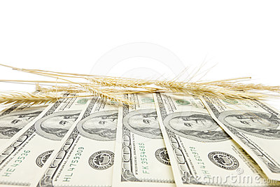 Profit from harvest background