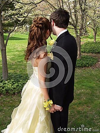 Free Prom Couple Half-Length Stock Photography - 744392