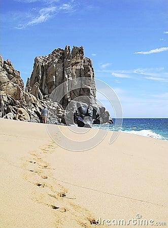 Promenade de plage du Mexique
