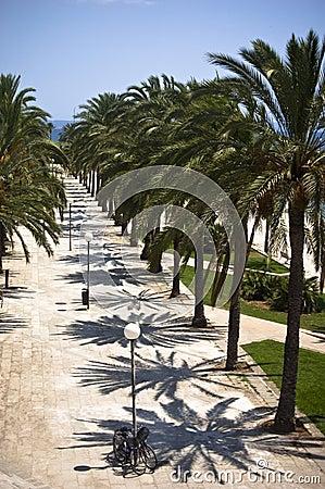 Promenade in Majorca