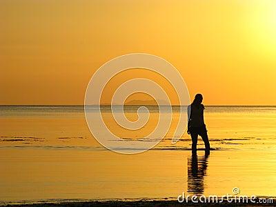 Promenade rêveuse de plage au coucher du soleil