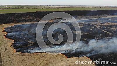Propósito aéreo de quemar la hierba seca en el campo Tiro de la grúa y técnica de la inclinación Acontecimientos del desastre y d almacen de video