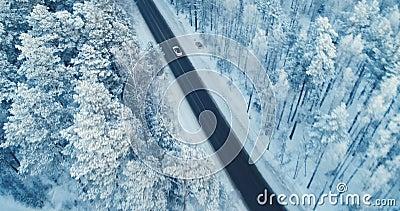 Propósito aéreo de una conducción de automóviles en un camino forestal nevoso 4K almacen de metraje de vídeo