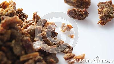 Propolisk?rnchen Bienenprodukte Apitherapy Bienenzucht Propolis ist ein Propolis Nat?rliches Antibiotikum stock footage