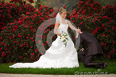 Proposal Of Marriage Pop Question Royalty Free Stock Photo - Image: 25129805