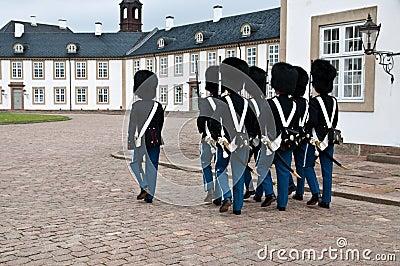 Protectores daneses del pelotón