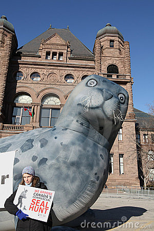 Protest against seal hunt Editorial Photo