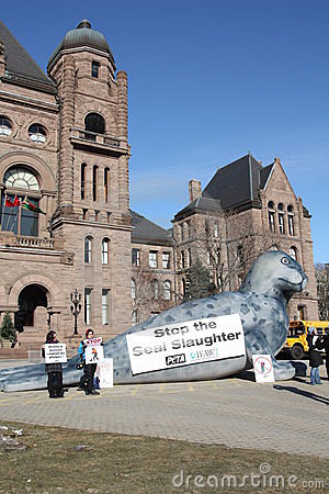 Protest against seal hunt Editorial Image