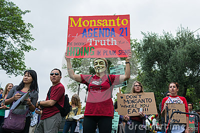 Protesters rallied in the streets against the Monsanto corporation. Editorial Stock Photo