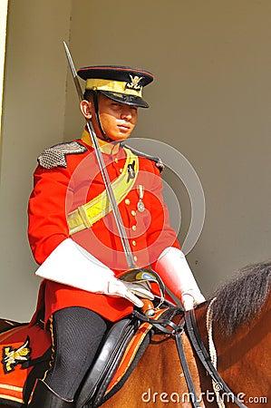Protezione reale sulla custodia di cavallo il palazzo Fotografia Editoriale