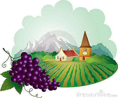 Provence background with grape