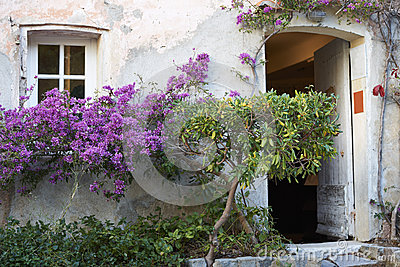 Provence house with flowers