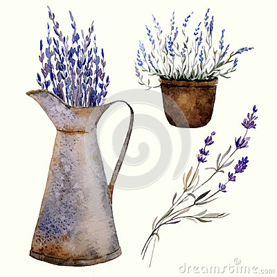 Free Provence Lavender Decor1 Royalty Free Stock Photography - 46706567
