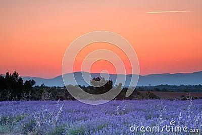 Provence sunrise