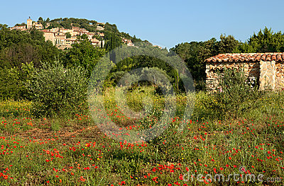 Provence village and poppies