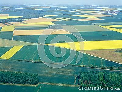 Prés et zones. Image aérienne.
