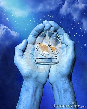 Przeznaczenia karm nieba czas wszechświat