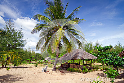Przy plażą tropikalna buda