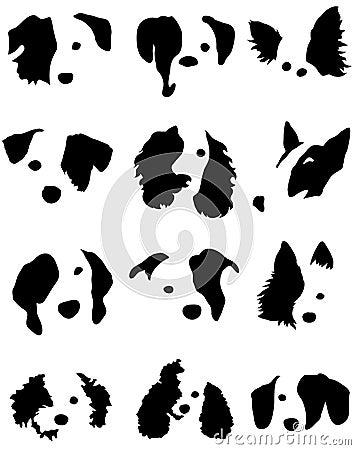 Psie głowy