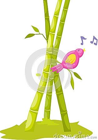 Pássaro que canta na árvore do babboo