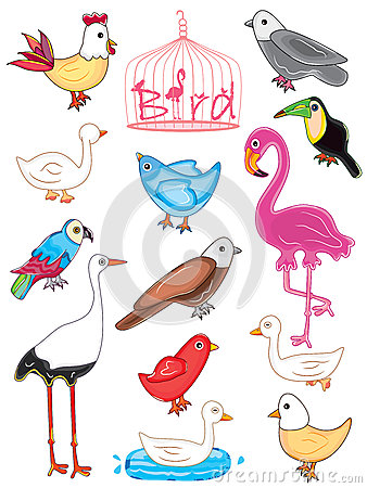 Pássaros ajustados