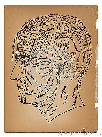 Psychology or medical illustration of male head