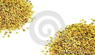 Pszczoły pollen