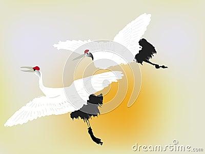 Ptaka żuraw